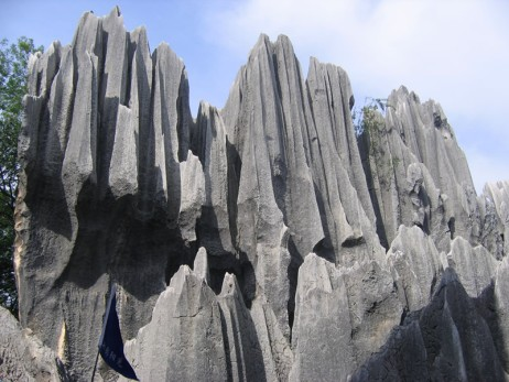 stone-forest-d