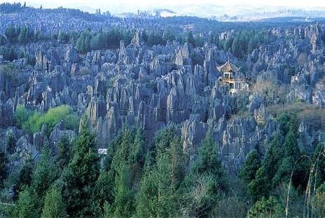 Mjesta na Zemlji s vanzemaljskim izgledom Stoneforest2